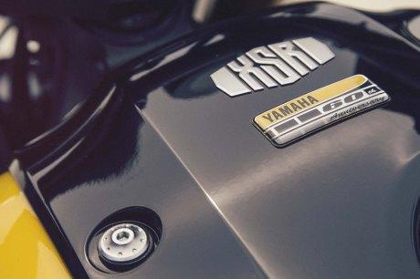 xsr900 6